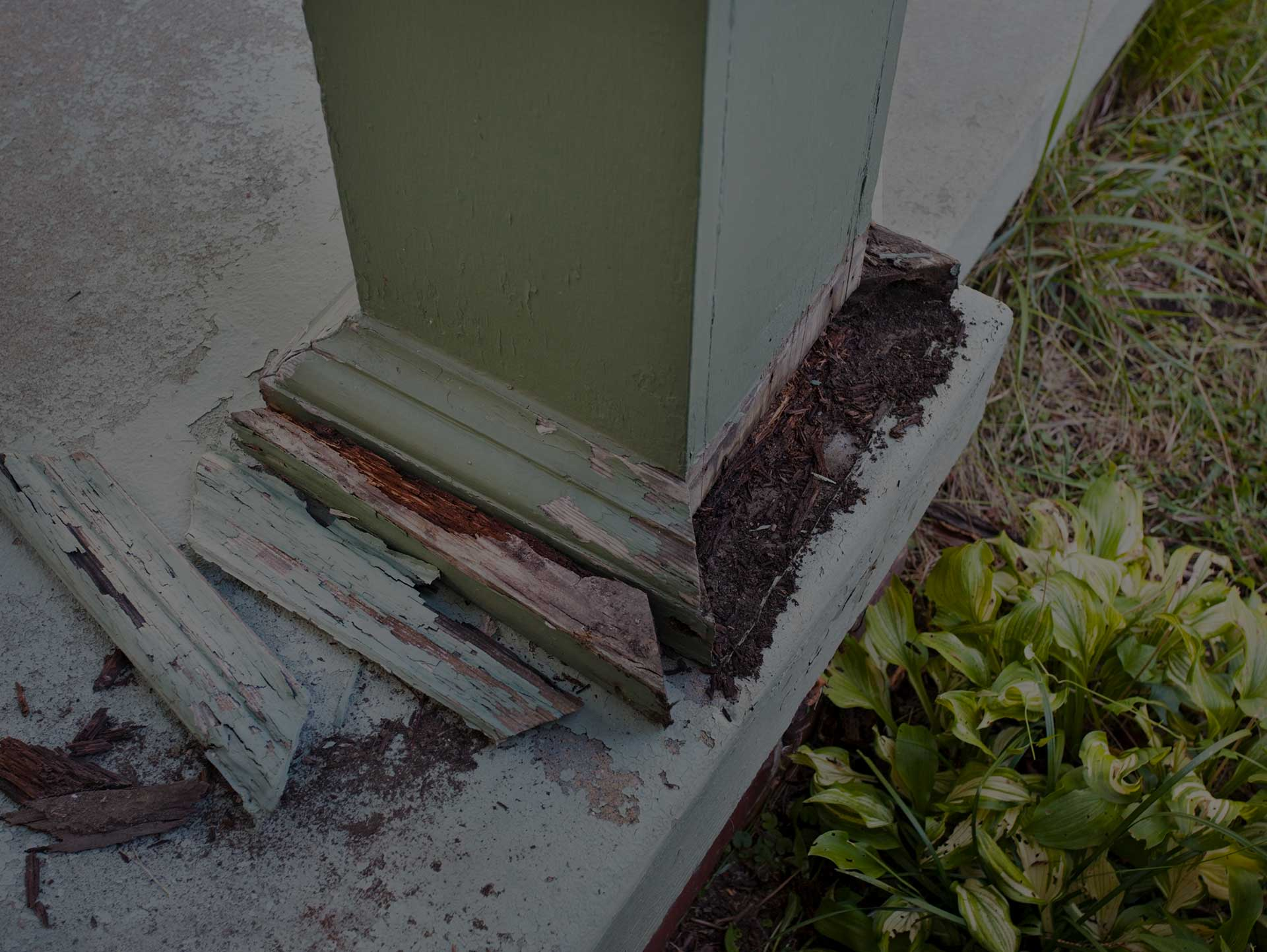 Termite Damage on Wooden Pillar